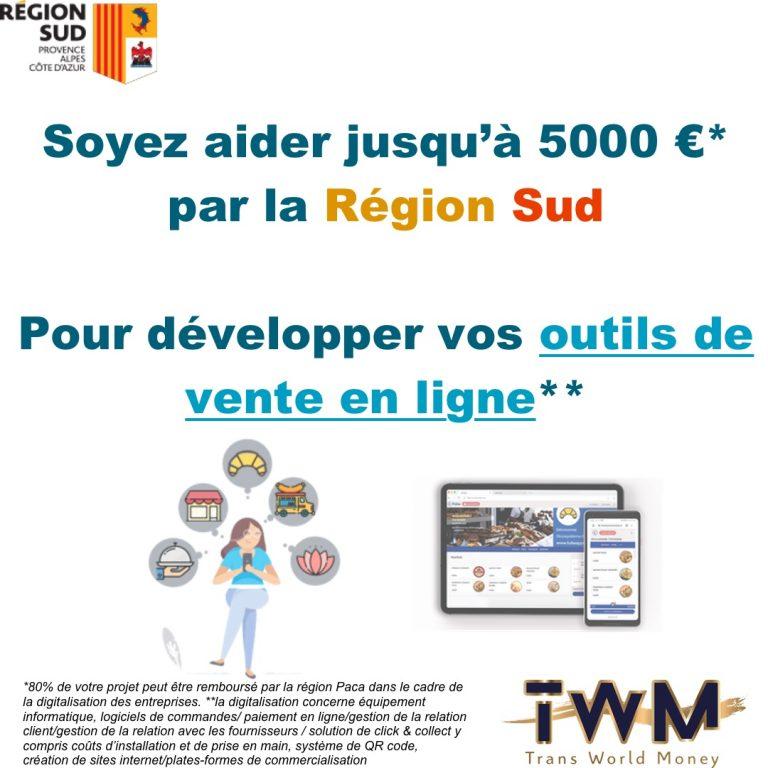 Read more about the article Plan Reaction pour développer la vente en ligne avec une nouvelle aide!